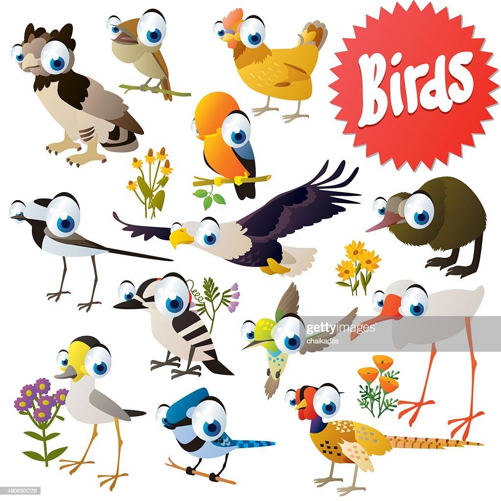 vector cartoon birds
