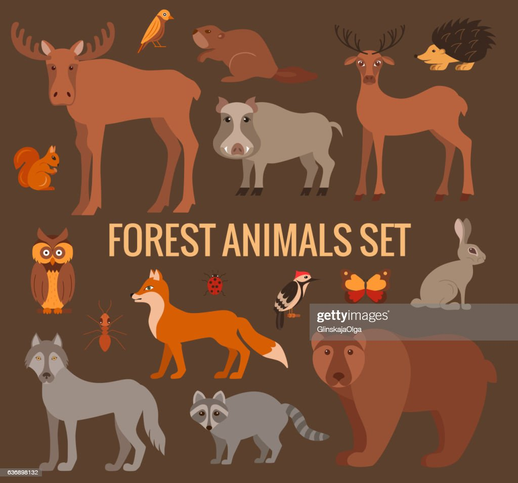 Vector cartoon flat style forest animals