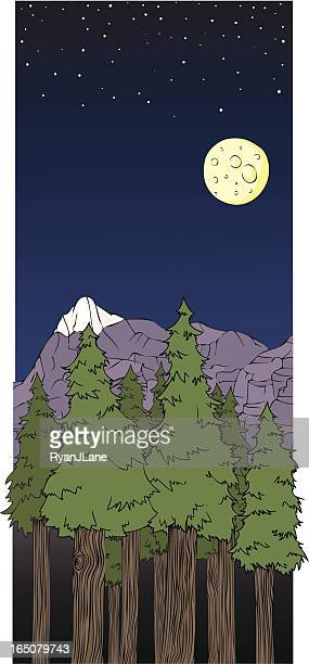 Vector Cartoon Forest Environment and Night Sky