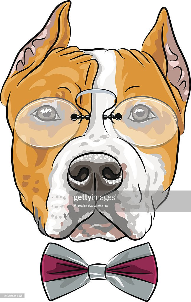 vector cartoon hipster dog American Staffordshire Terrier