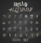Vector chalk set of autumn icons on blackboard background.