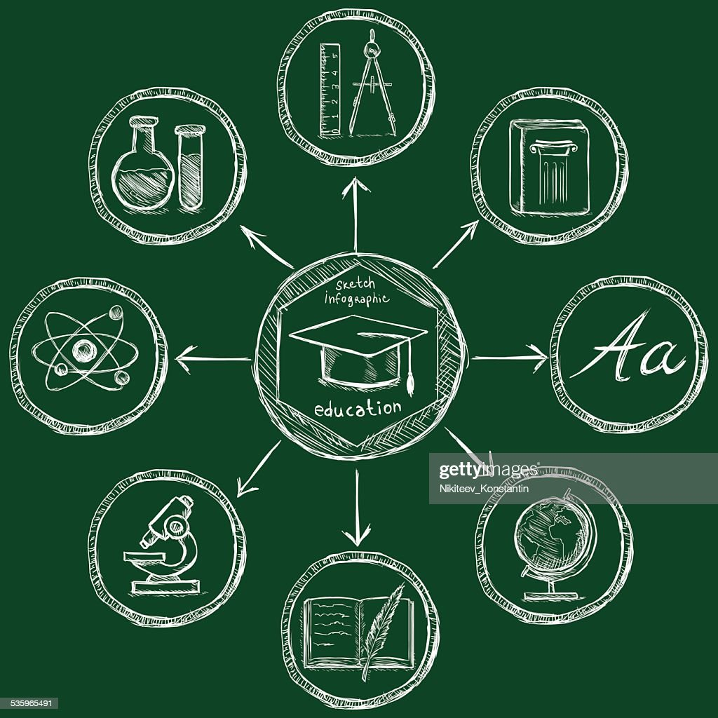 Vector Chalk Sketch Education Infographic Template : Vector Art