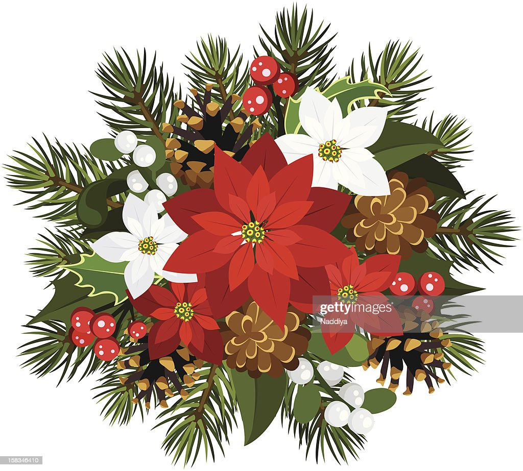 vector christmas decoration with poinsettia fir tree cones holly and mistletoe