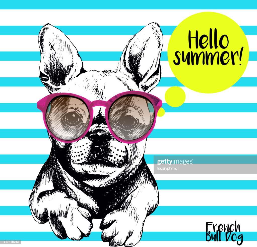 Vector close of french bulldog wearing the sunglassess.