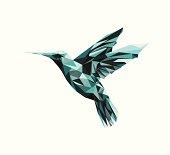 Vector - colibri geometric