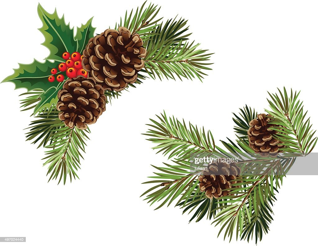 Vector collection of Christmas tree branches