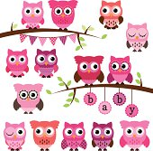 Vector Collection of Girl Baby Shower Themed Owls and Branches