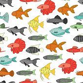 Vector colored seamless pattern of aquarium fish.