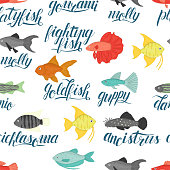 Vector colored seamless pattern of aquarium fish with lettering.