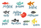 Vector  colored set of  aquarium fish with lettering isolated on white background.