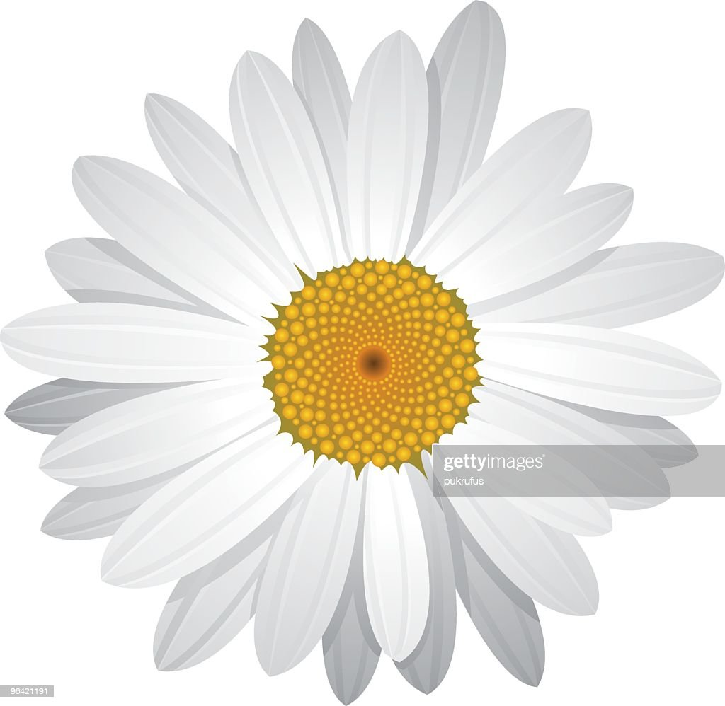 Vector Daisy with moveable petals