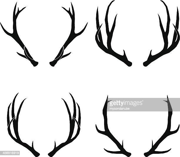 vector deer antlers collection - antler stock illustrations