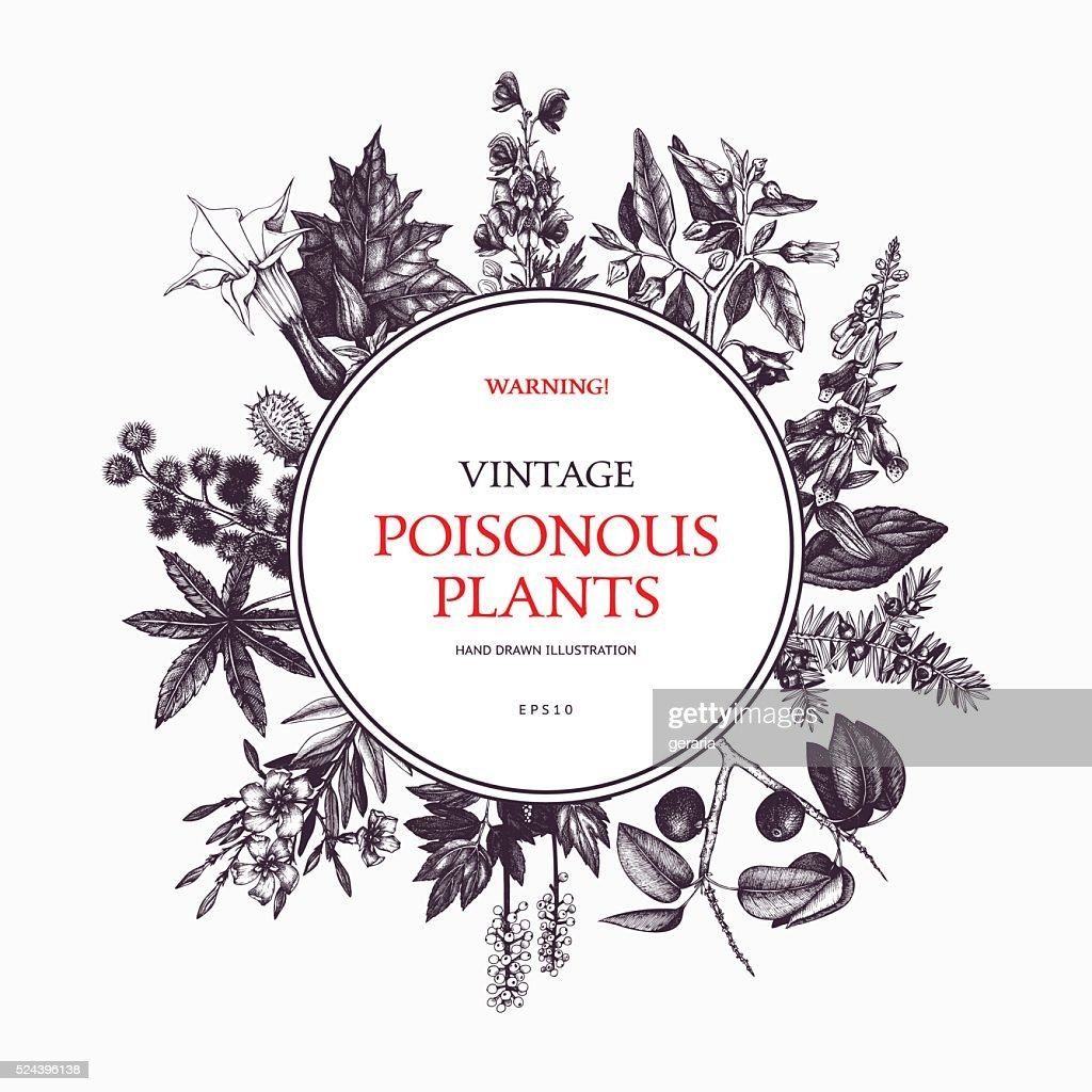 Vector design with hand drawn poisonous plants.