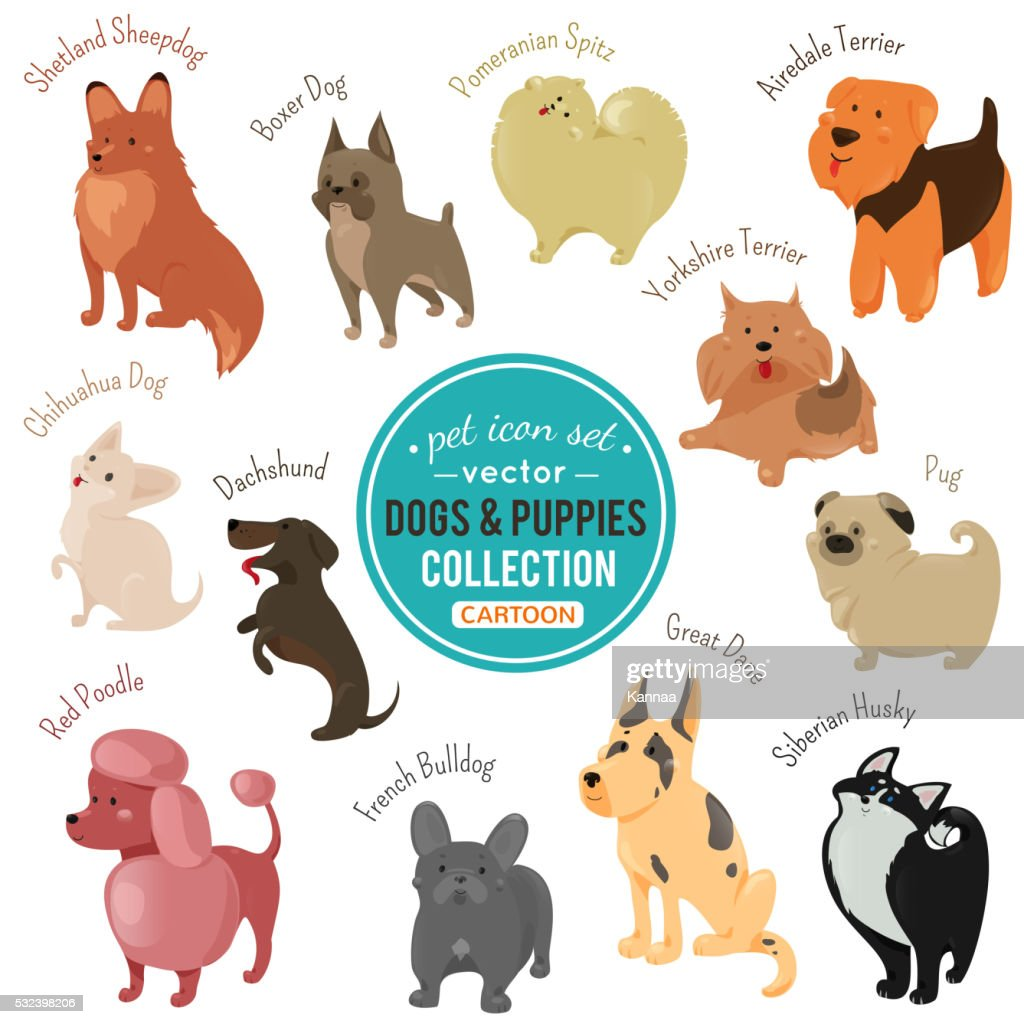 Vector dogs and puppies depicting different fur color breeds