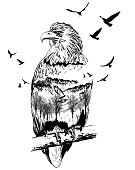 Vector Double exposure, eagle, wildlife concept