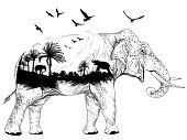 Vector Double exposure, elephant and jungles, wildlife concept