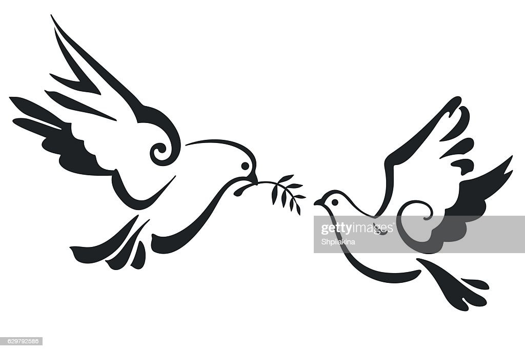 Vector Doves isolated on white