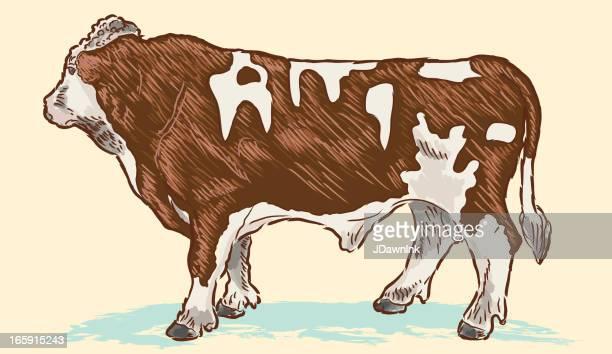 ilustraciones, imágenes clip art, dibujos animados e iconos de stock de vector ilustración de una carne de vaca o dirección - beef pie