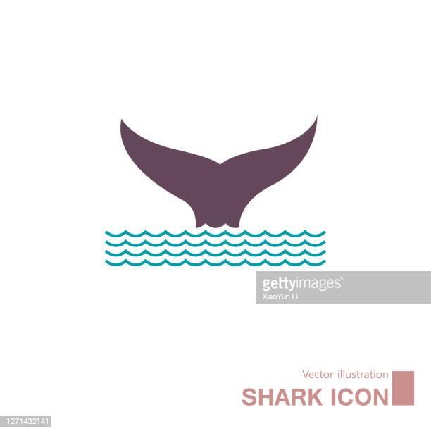 vector drawing of marine life. - aquatic organism stock illustrations