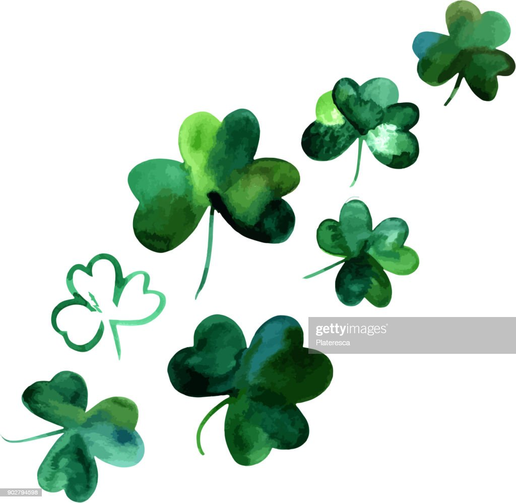 Vector drawings of watercolor shamrocks, isolated on white