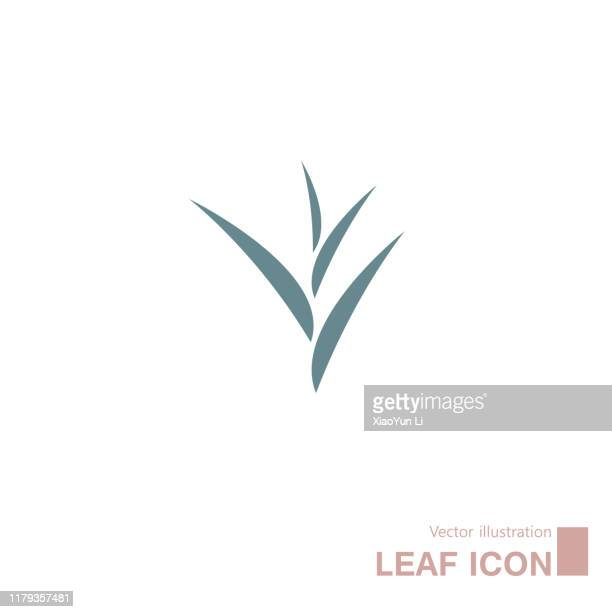 vector drawn leaves. isolated on white background. - grass stock illustrations