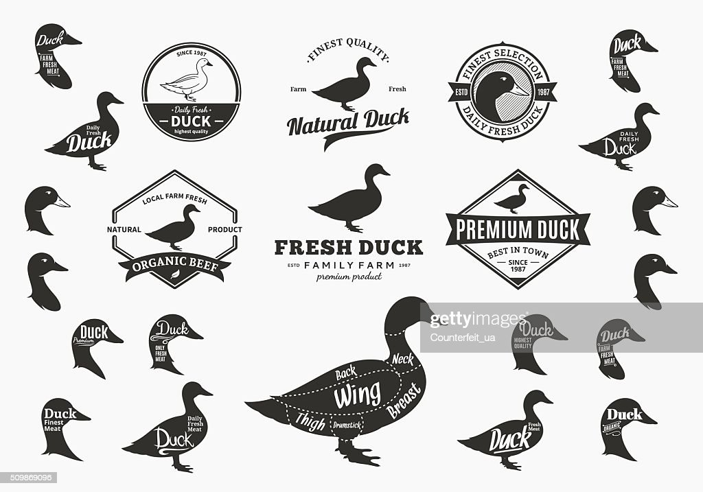Vector Duck Labels, Icons, Charts and Design Elements