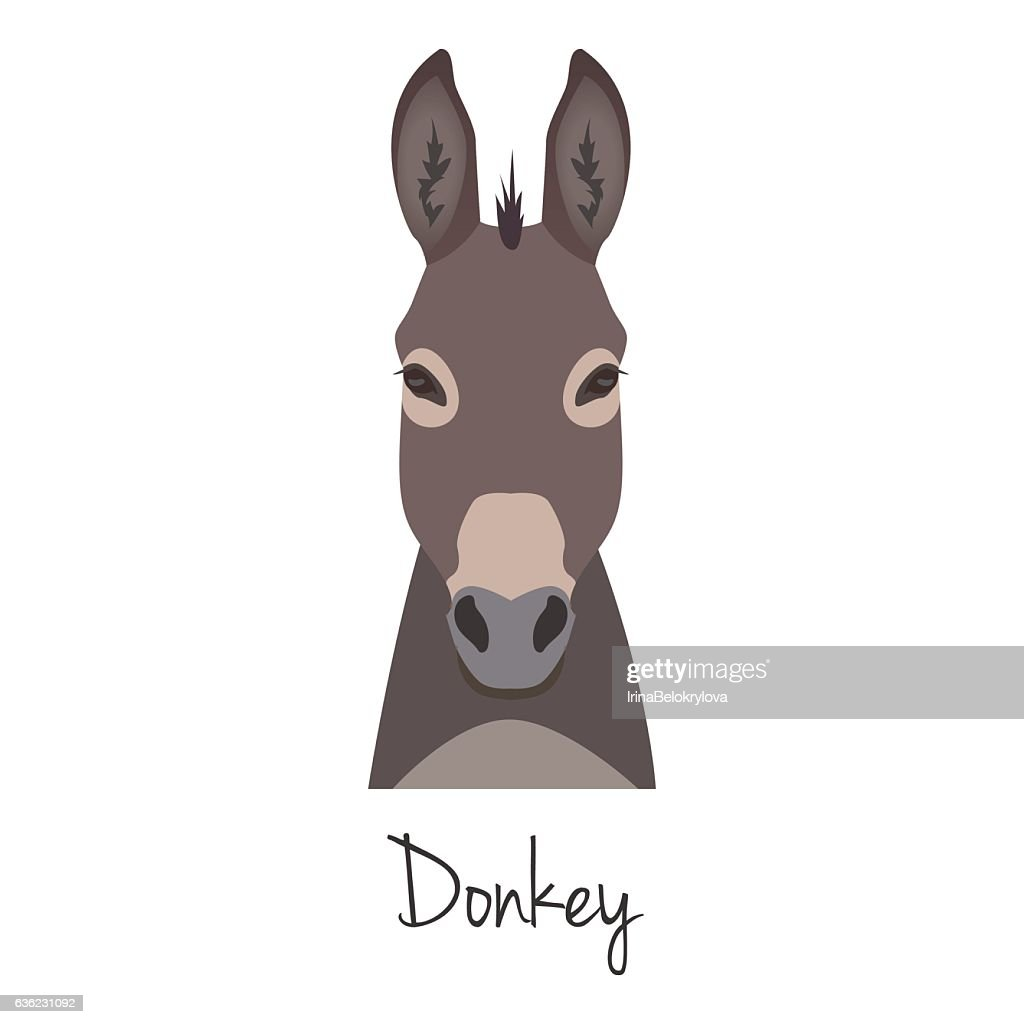 Vector dunkey grey head isolated. Flat style, cartoon object
