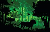 Vector evening tropical rainforest Jungle background with lion, harpy, python and butterflies