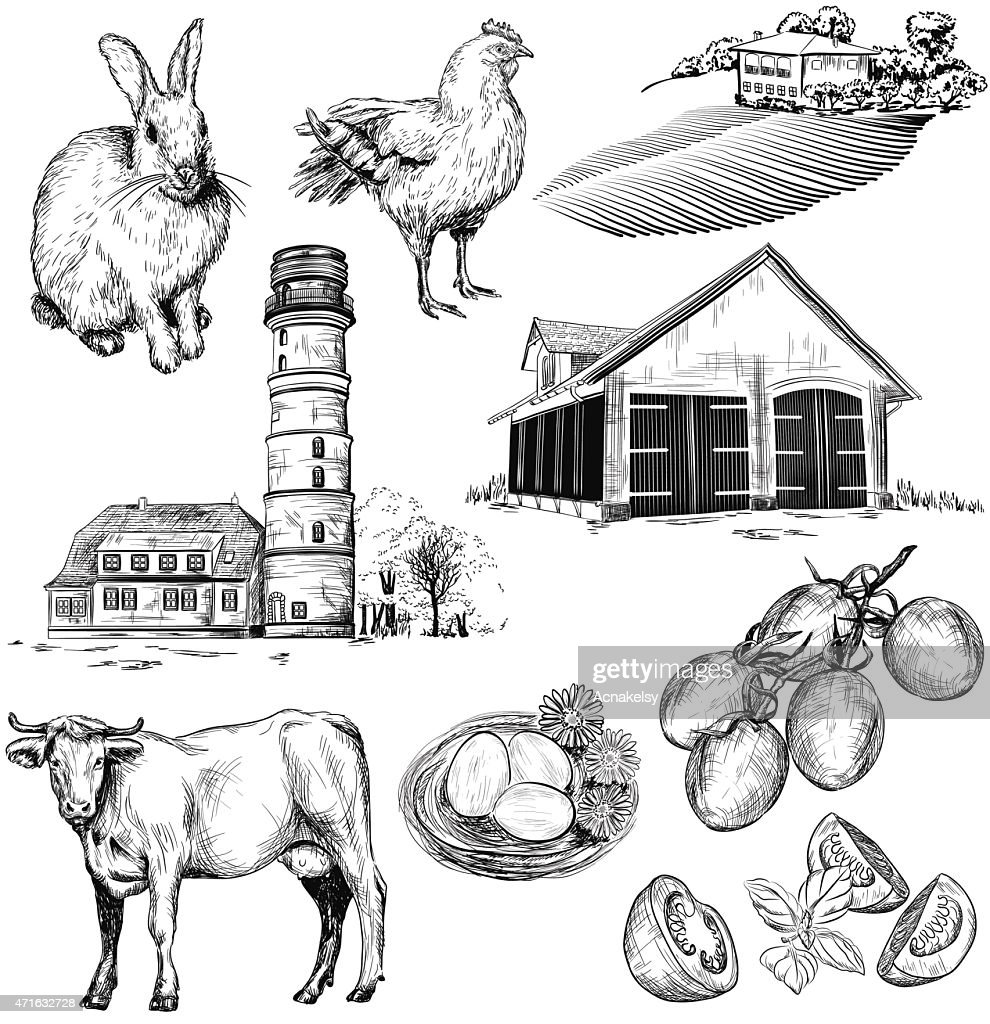 Vector farm and agriculture pictures
