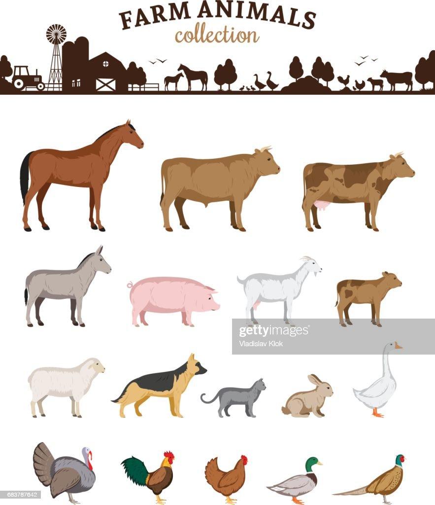 Vector farm animals cartoons
