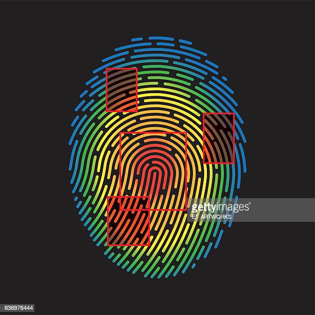 Vector Fingerprint
