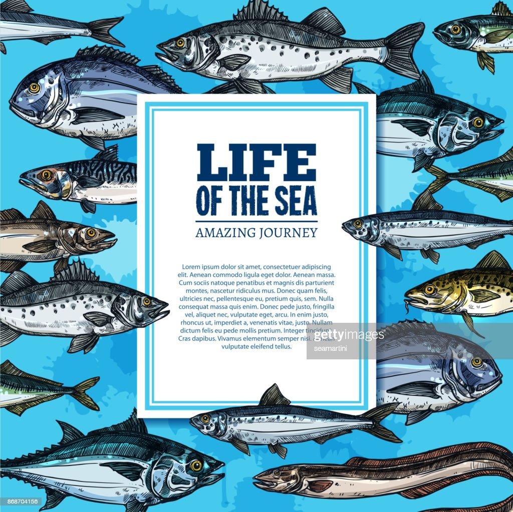 Vector fishes sketch poster sea life ocean fish