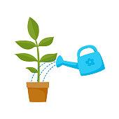 vector flat cartoon green plant in the ceramic pot