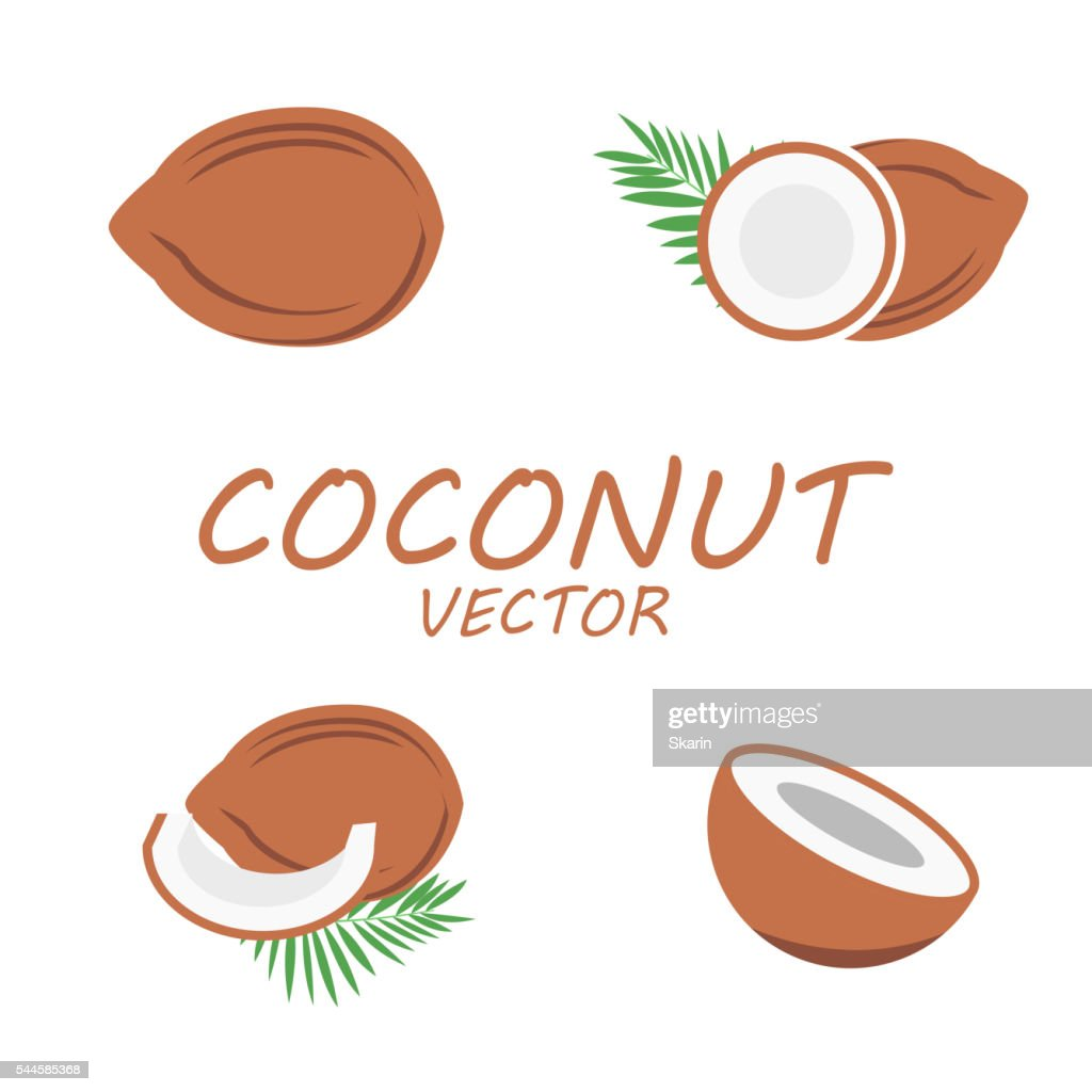 Vector flat coconut icons set