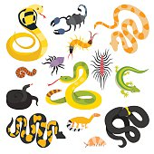 Vector flat snakes and other danger animals collection isolated on