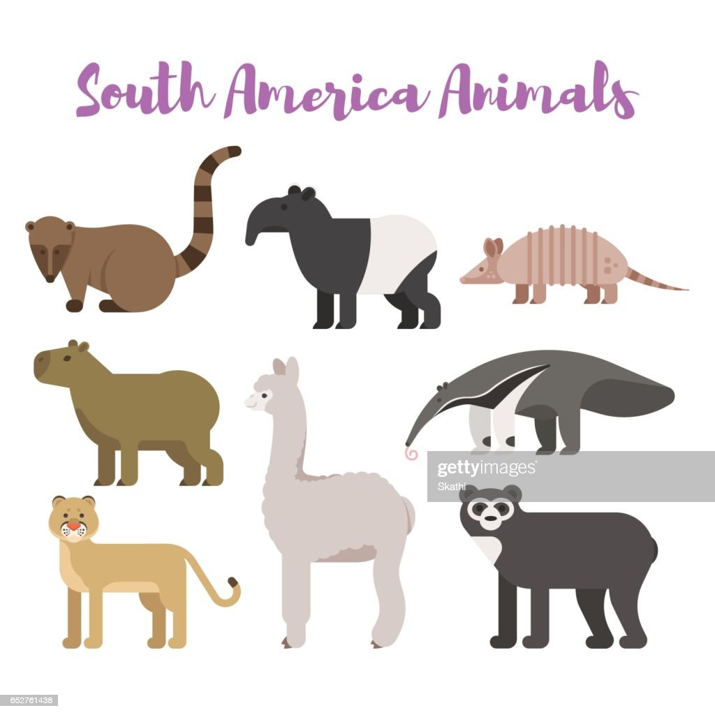 Vector flat style set animals of South America.