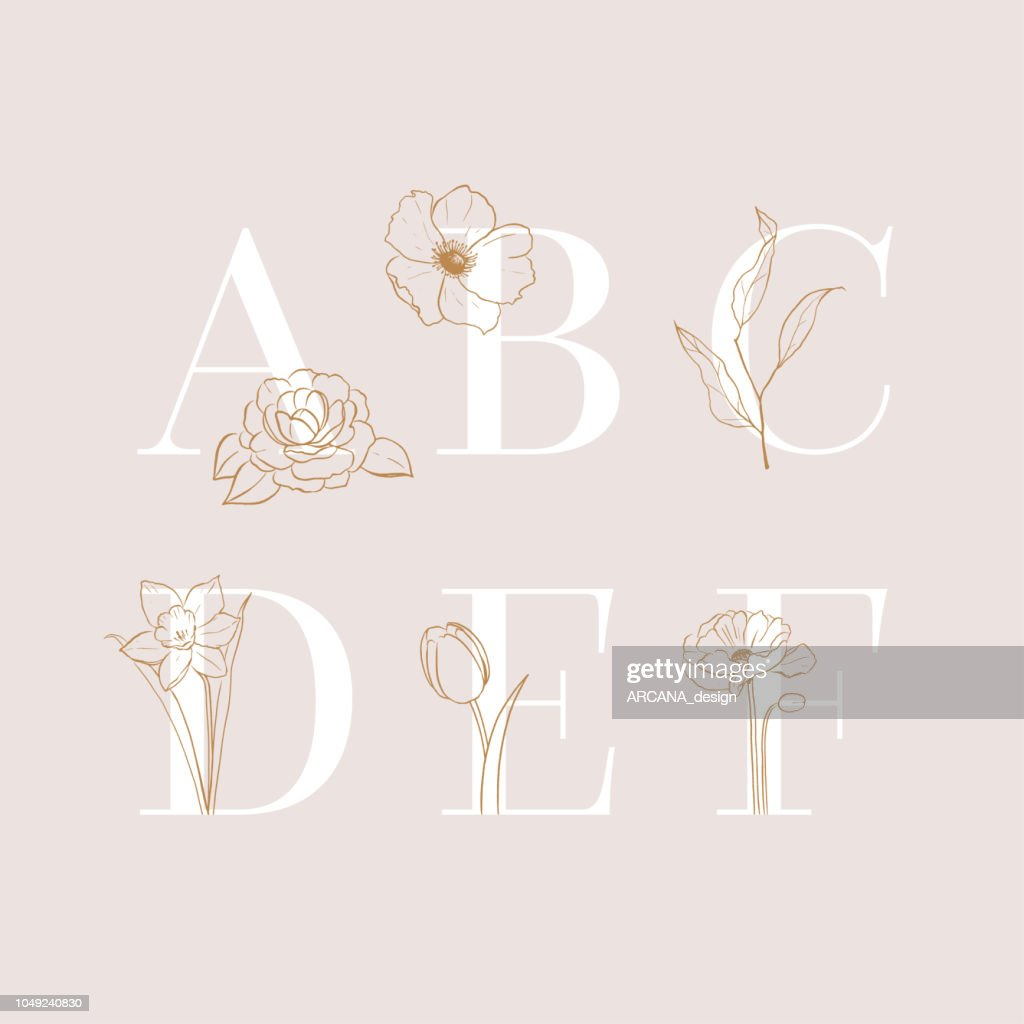 Vector floral alphabet letters