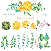 Vector floral set.Colorful floral collection with leaves and flowers, drawing watercolor
