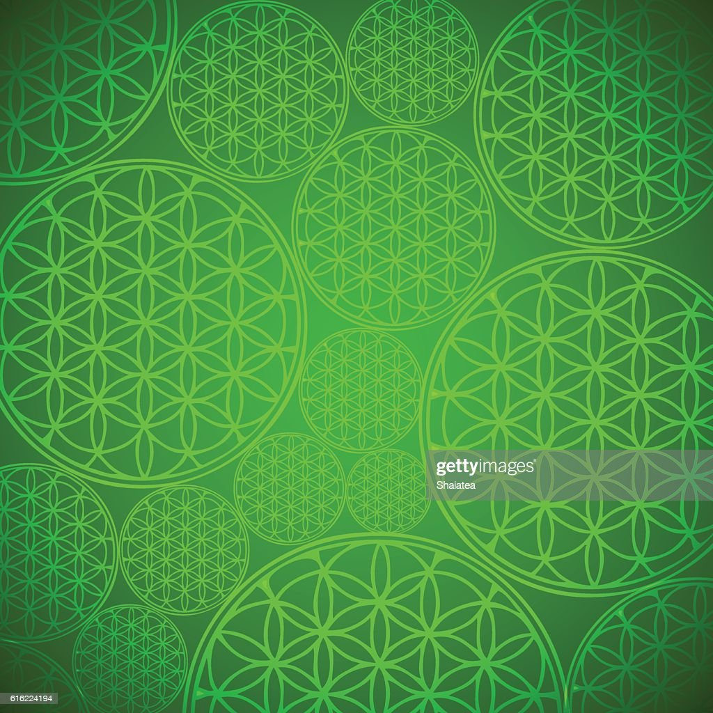 Vector Flower of Life Background Illustration : Vector Art