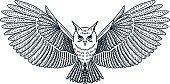 Vector Flying Owl