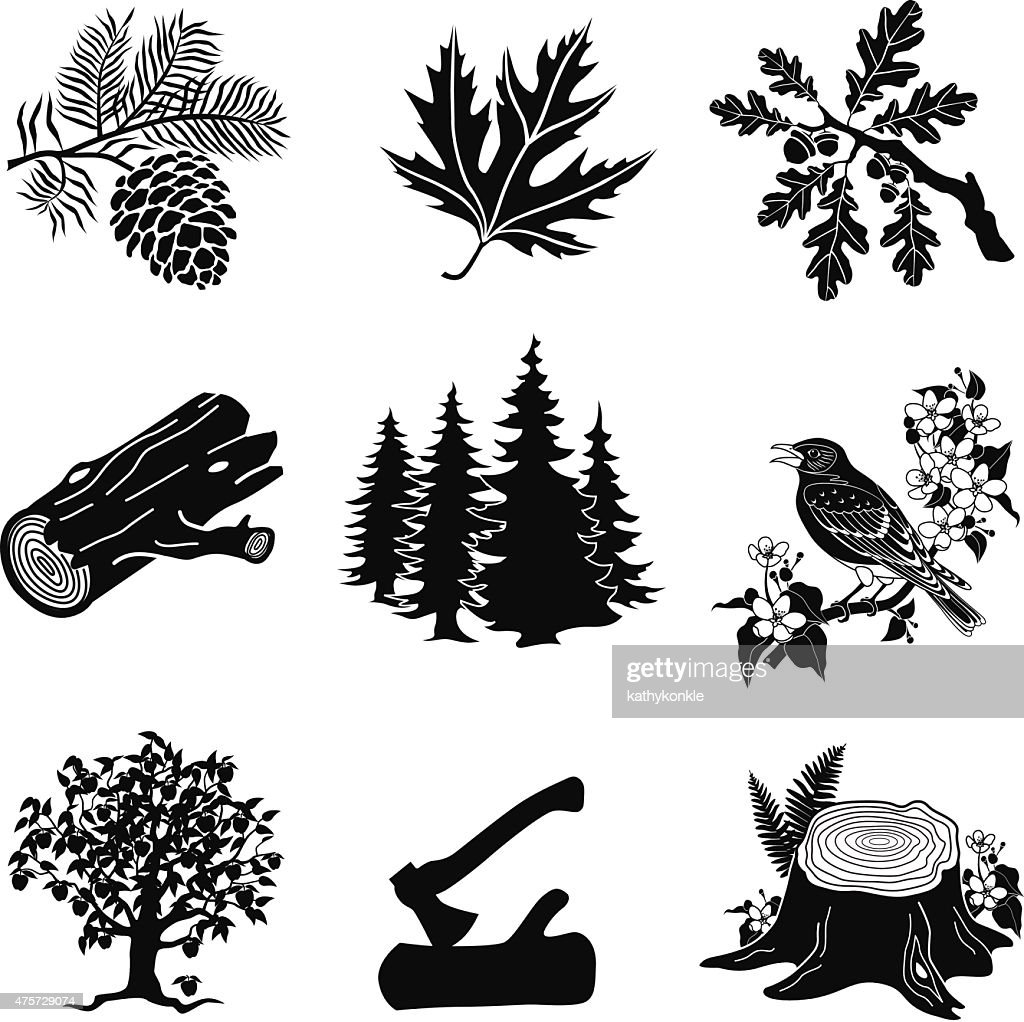 vector forest animals, plants in black and white