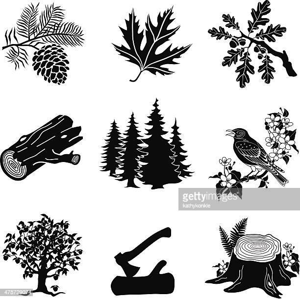 ベクトル森林動物、植物、ブラックおよびホワイト