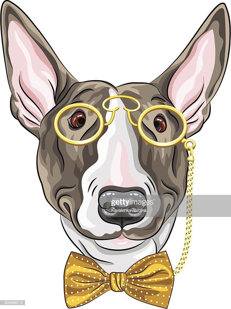 vector funny cartoon hipster dog Bullterrier