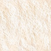 Vector Fur Seamless Pattern. Beige Background.
