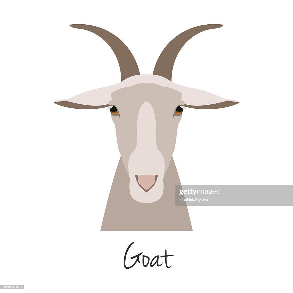 Vector goat head isolated. Flat, cartoon style object
