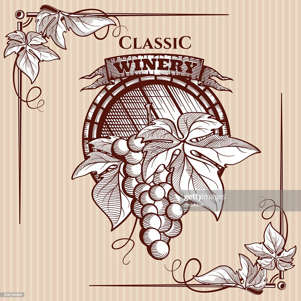 Vector graphic poster with picture of grapes bunch and vine
