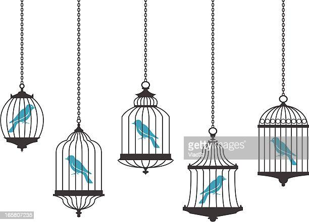 vector graphics of birds in hanging cages - cage stock illustrations, clip art, cartoons, & icons