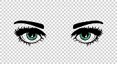 Vector green female eyes with long lashes and make up. Beautiful girls