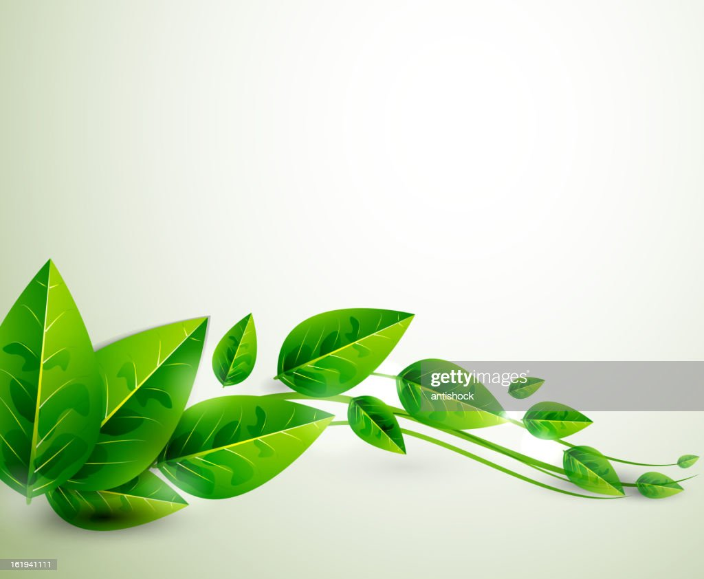 Vector green leaf nature background
