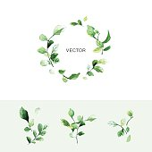 Vector green leaf wreath with place for text and set of branches with leaves in watercolor style.